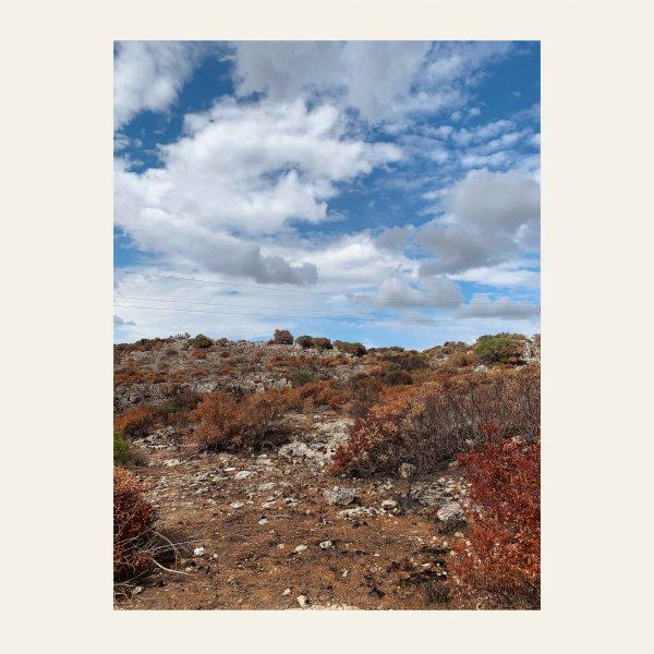 caleido_studio-terre_macchia